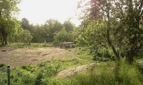 Bord och bänkar på Henriksdals hundrastgård
