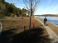 Kvarnholmen, Nacka: Strandpromenad i Kvarnholmsparken