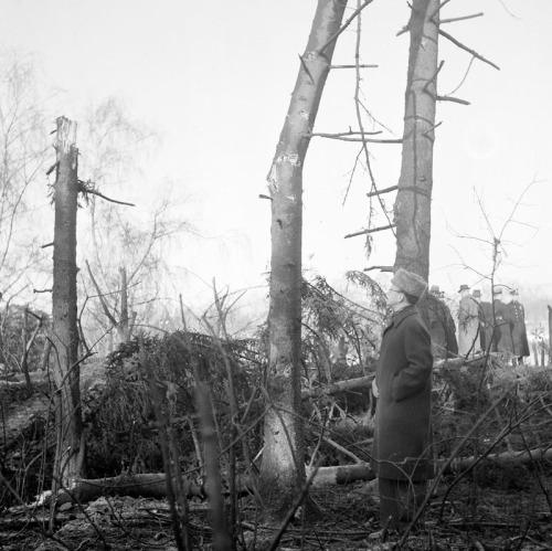 Rysk bombning av Eriksdal, 1944
