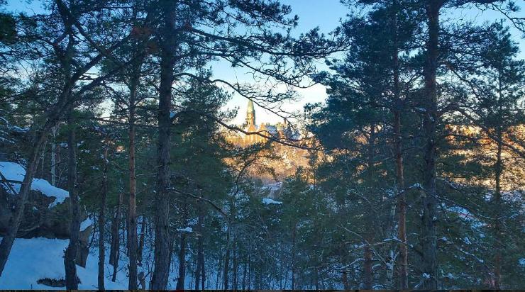 Danvikshem syns från skogen Trolldalen