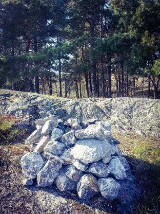 Geocaching i skogen Trolldalen i Nacka