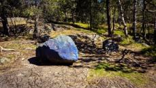 Förskolorna har målat starka färger på fyra stenar i Trolldalen för att barnen ska orientera sig i skogen.