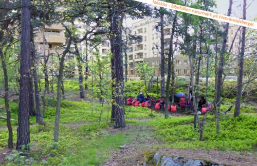 Kommunens vision: Barn lär sig natur bland några träd som är kvar av Trolldalen