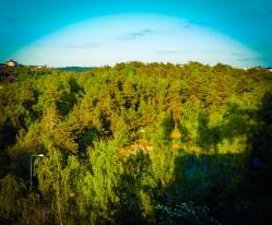 Vy från Henriksdalsringen mot skogen Trolldalen