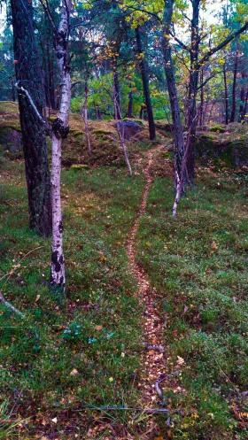 Djurstig i skogen Trolldalen mellan Henriksdalsringen, Finnboda och Svindersviken - Danvikstull