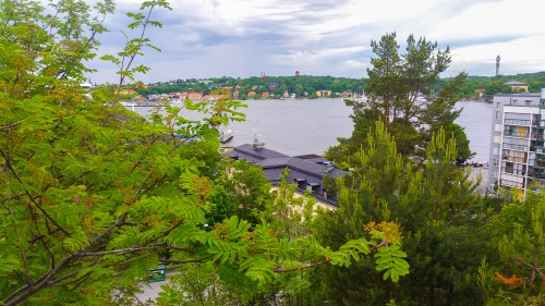Utsikten från Bageriberget i Saltsjöqvarn mot Danviks hospital, Inloppet och Djurgården