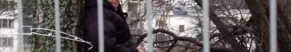 Granne vid seniorboendet bakom Danvikshem kedjar fast sig vid träd