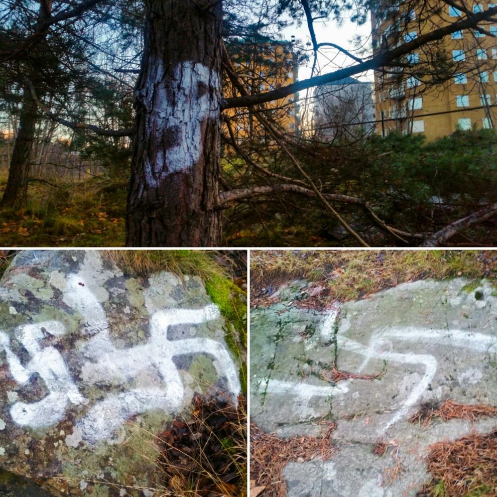 Hakkors på klippor och träd i Bageriberget i Saltsjöqvarn
