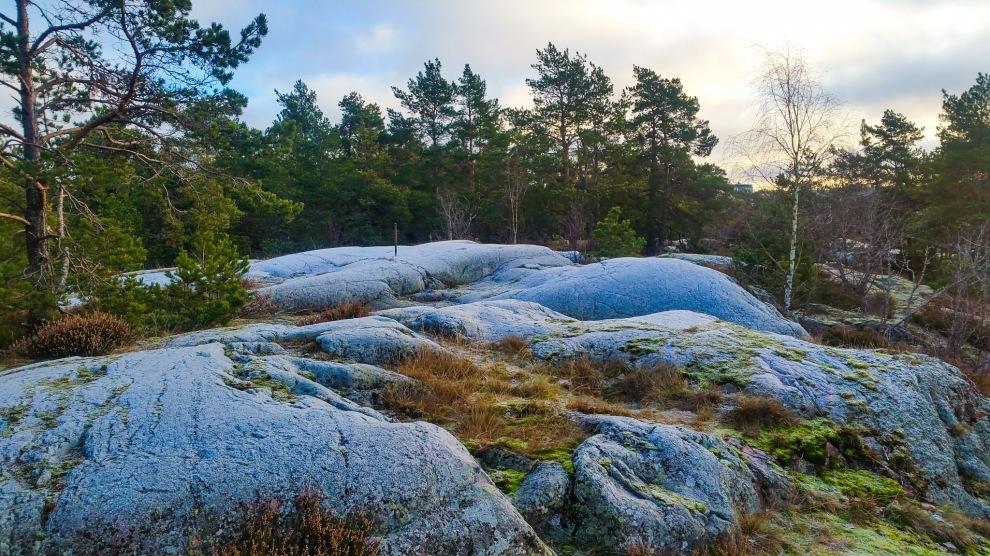Frosttäckta klippor i nyckelbiotopen Trolldalen på Henriksdalsberget