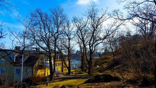 Våriga trädgården på Östra Finnbodavägen som ska bebyggas