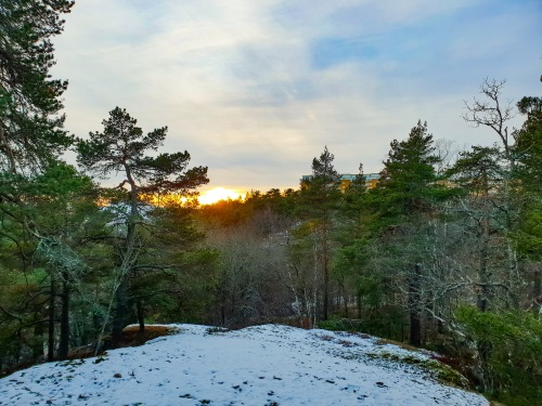 Henriksdalsringen syns från Trolldalen i Nacka