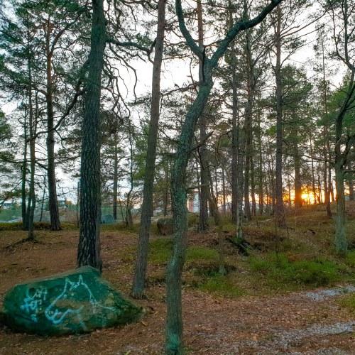 Barnens gröna sten i Trolldalen i Nacka