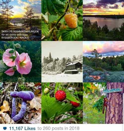 Naturen på Västra Sickkaön på Instagram